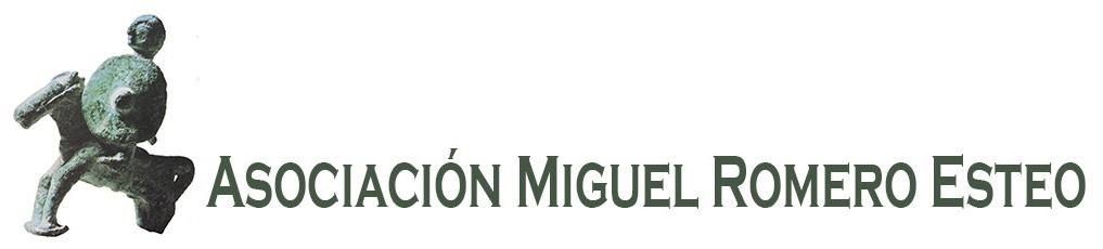 Asociación Miguel Romero Esteo